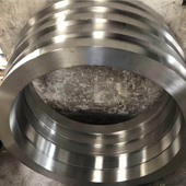 304 Stainless Steel Forging