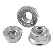 304L Stainless Steel Serrated Flange Nuts